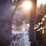 مستند سیدمحمود